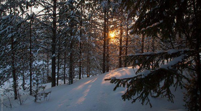 Новогодние каникулы. На лыжах по склонам и на оленях в Лапландию