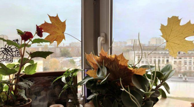 Украшение дома листьями